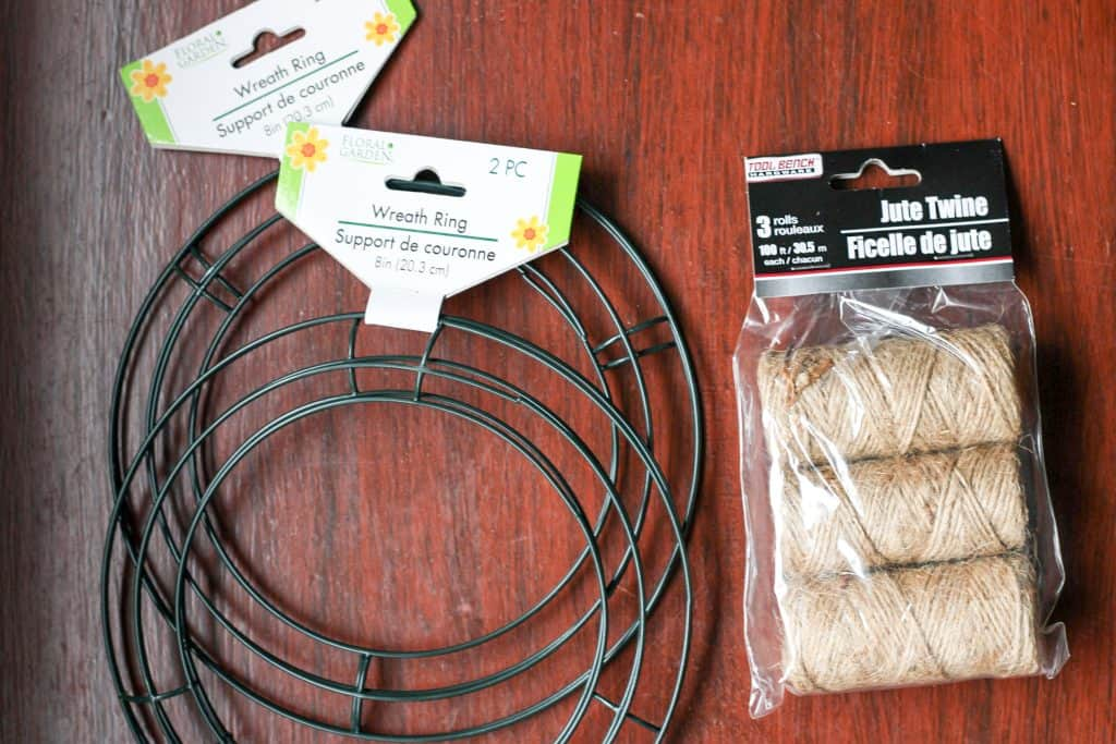 dollar tree items for projecy