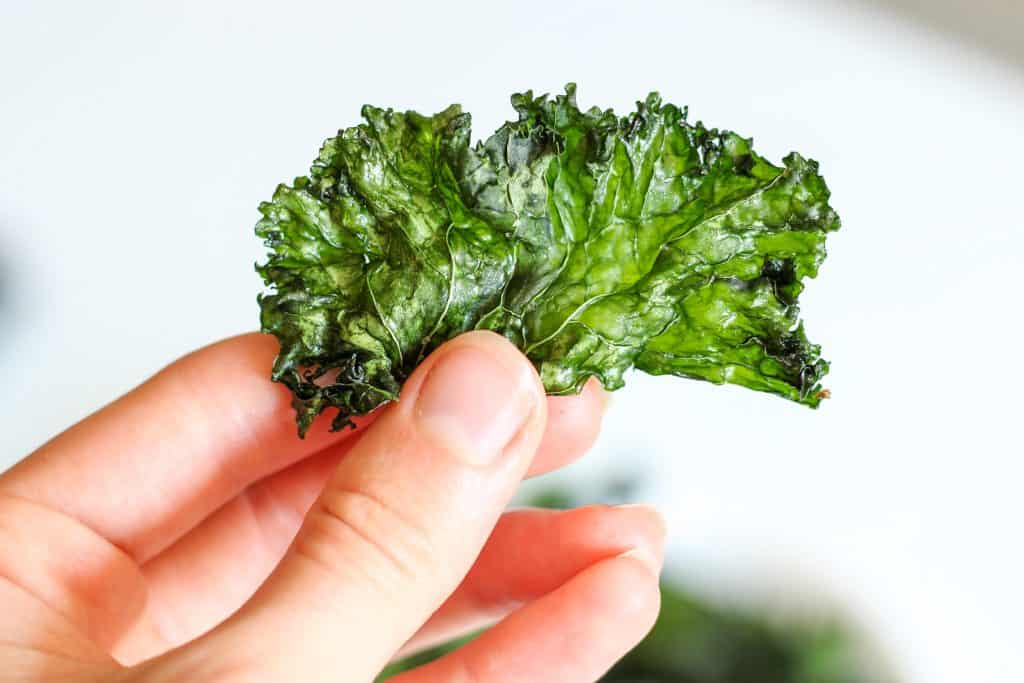 hand holding a kale chip