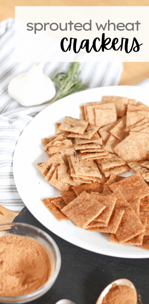 plate of different flavored sprouted wheat crackers