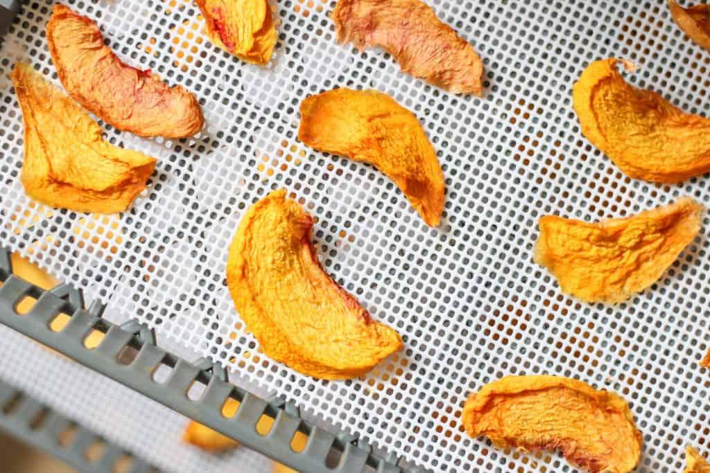 dried peaches on dehydrator trays